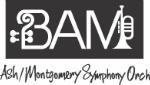 BAMSO logo